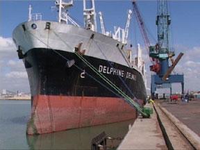 En attendant Delphine