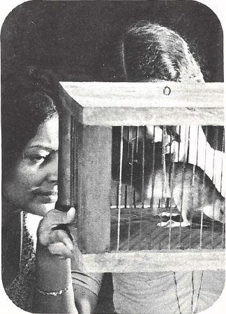 Le Piège à rats